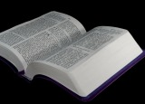 La Bible, ma passion !