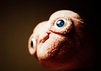 L'�glise admet-elle l'existence des extraterrestres ?