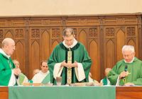 Les laïcs dans l'Église